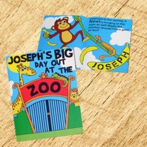 Big Day Out Personalised Zoo Story Book